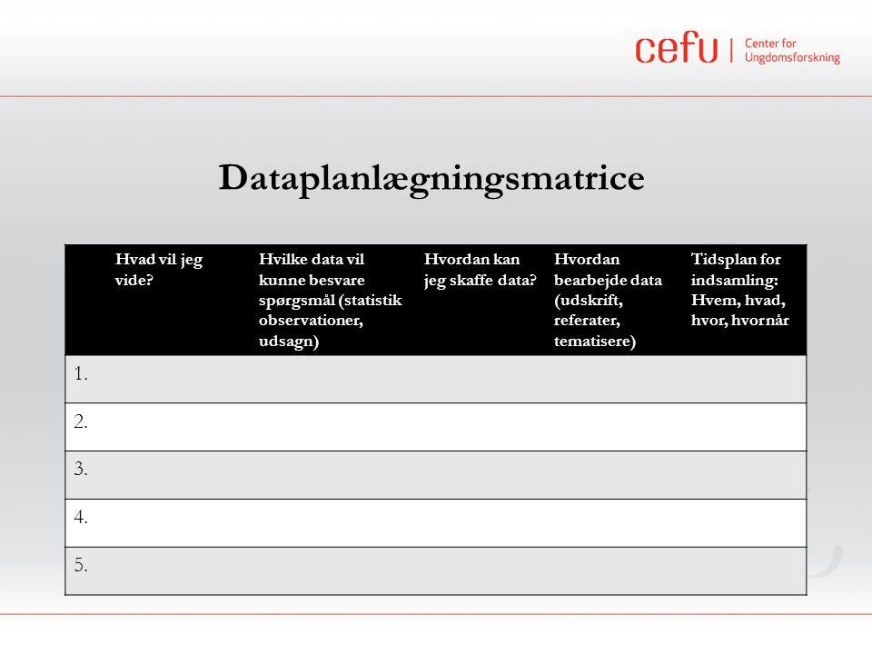 Dataplanlægningsmatrice