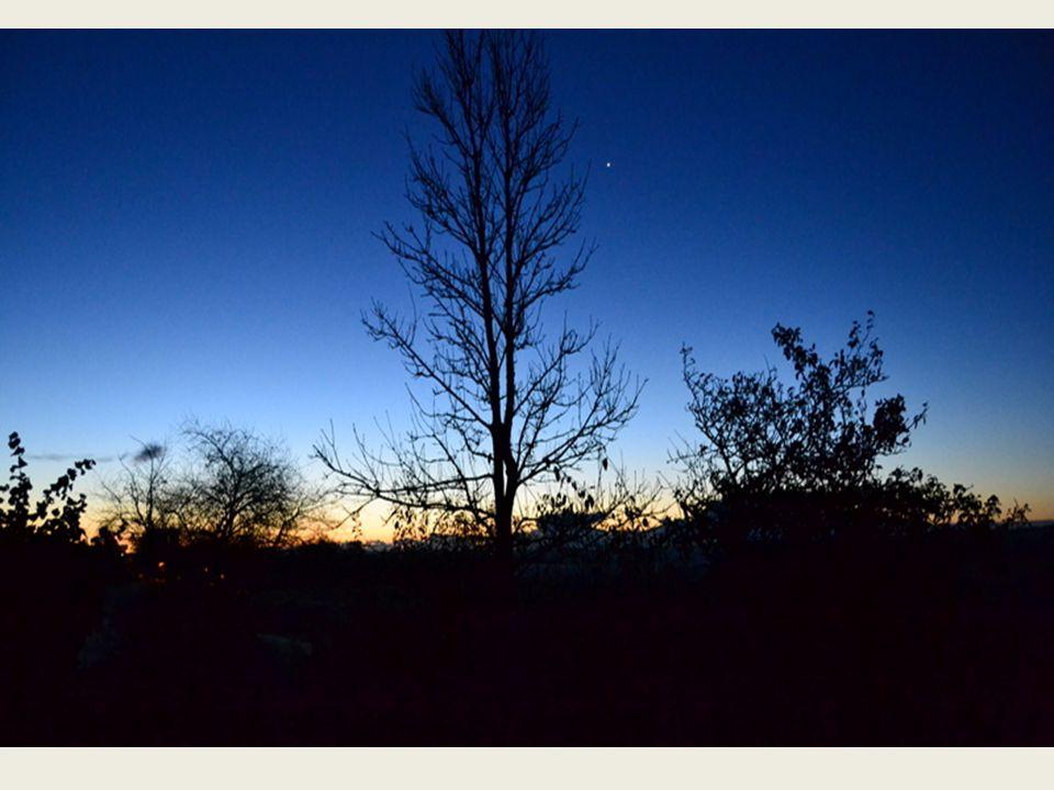 Samtidig med at lyset gør os godt, så har det den egenskab at det også afslører, hvad vi ikke har kunnet se i mørket.