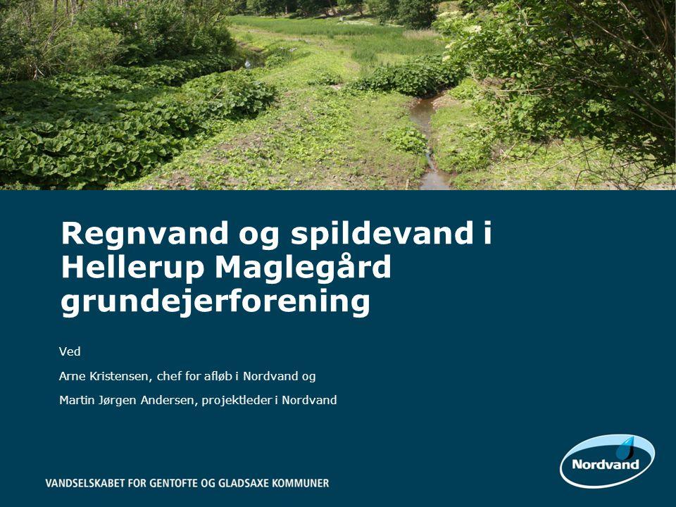 Regnvand og spildevand i Hellerup Maglegård grundejerforening
