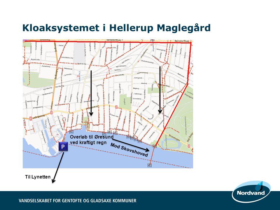 Kloaksystemet i Hellerup Maglegård