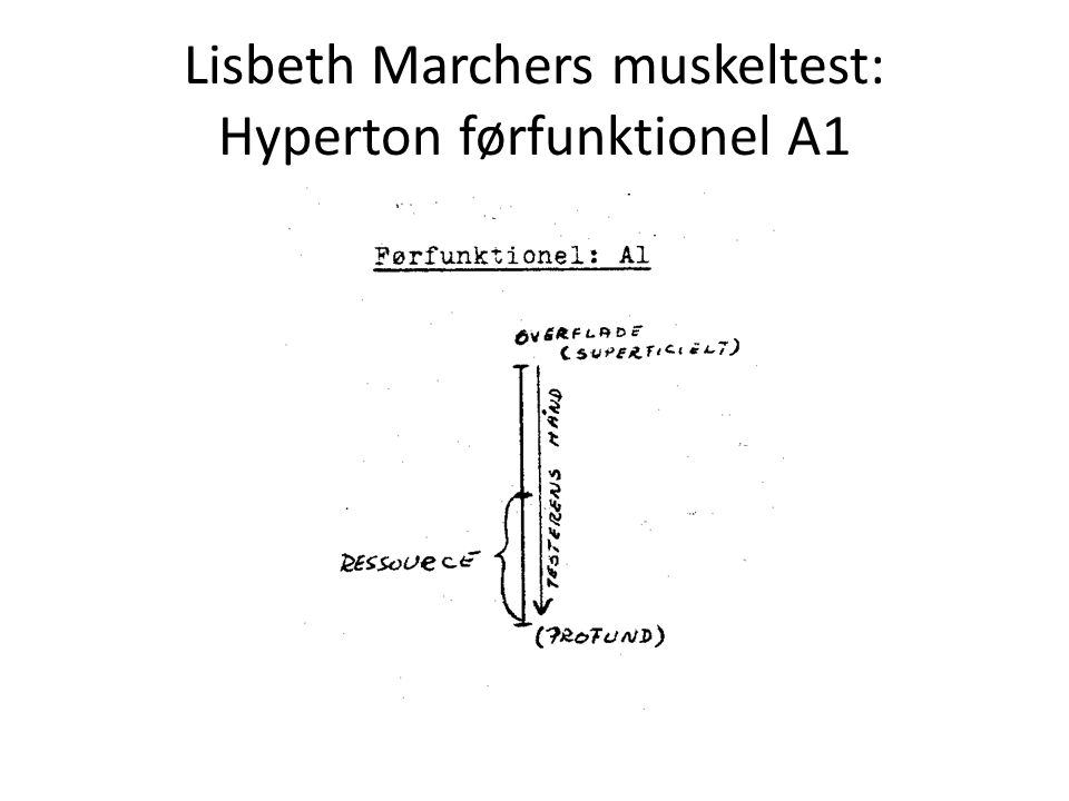 Lisbeth Marchers muskeltest: Hyperton førfunktionel A1