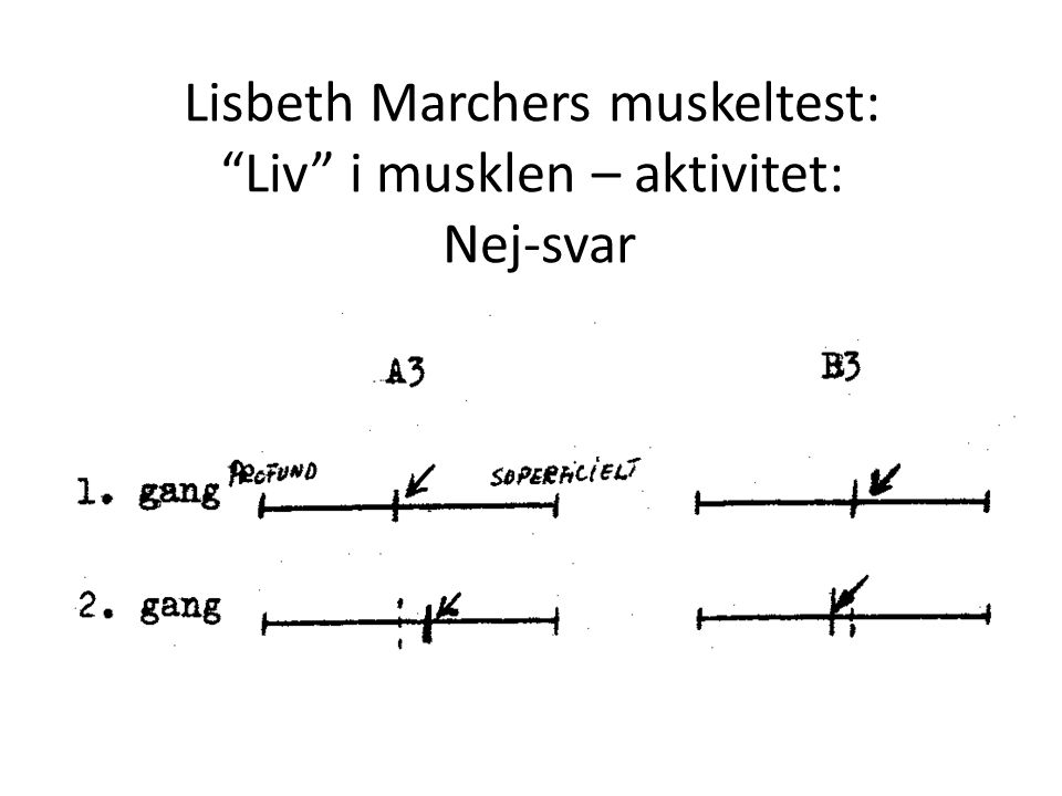 Lisbeth Marchers muskeltest: Liv i musklen – aktivitet: Nej-svar