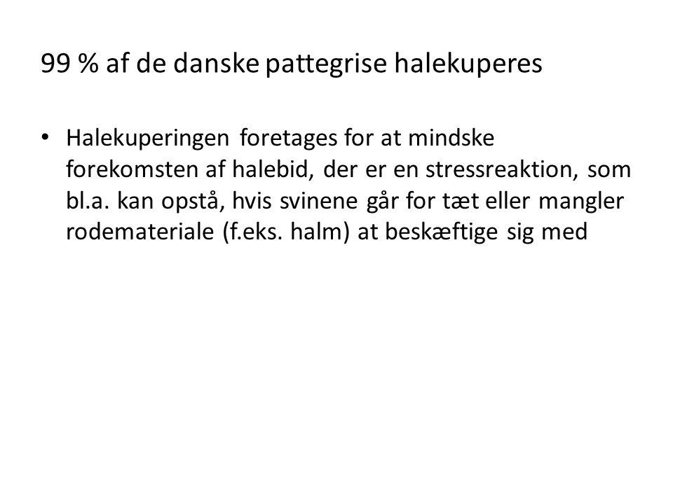 99 % af de danske pattegrise halekuperes