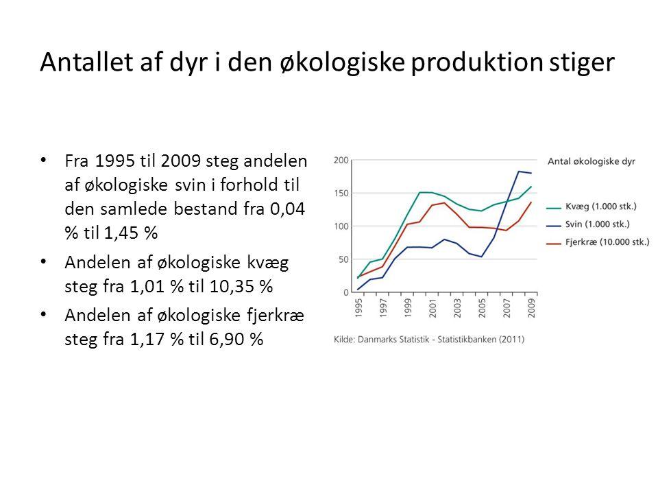 Antallet af dyr i den økologiske produktion stiger