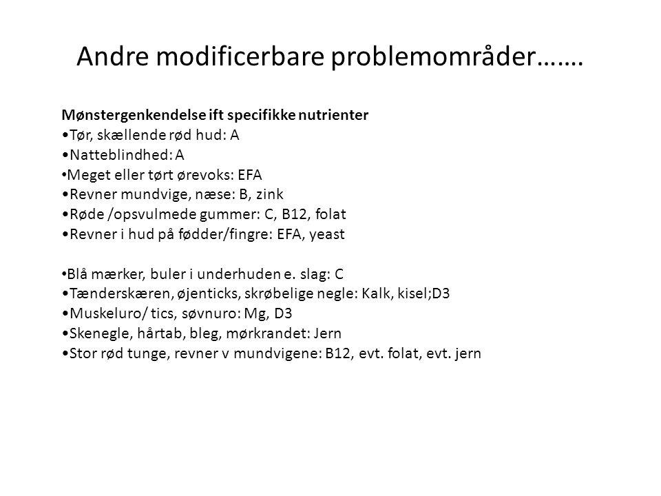 Andre modificerbare problemområder…….