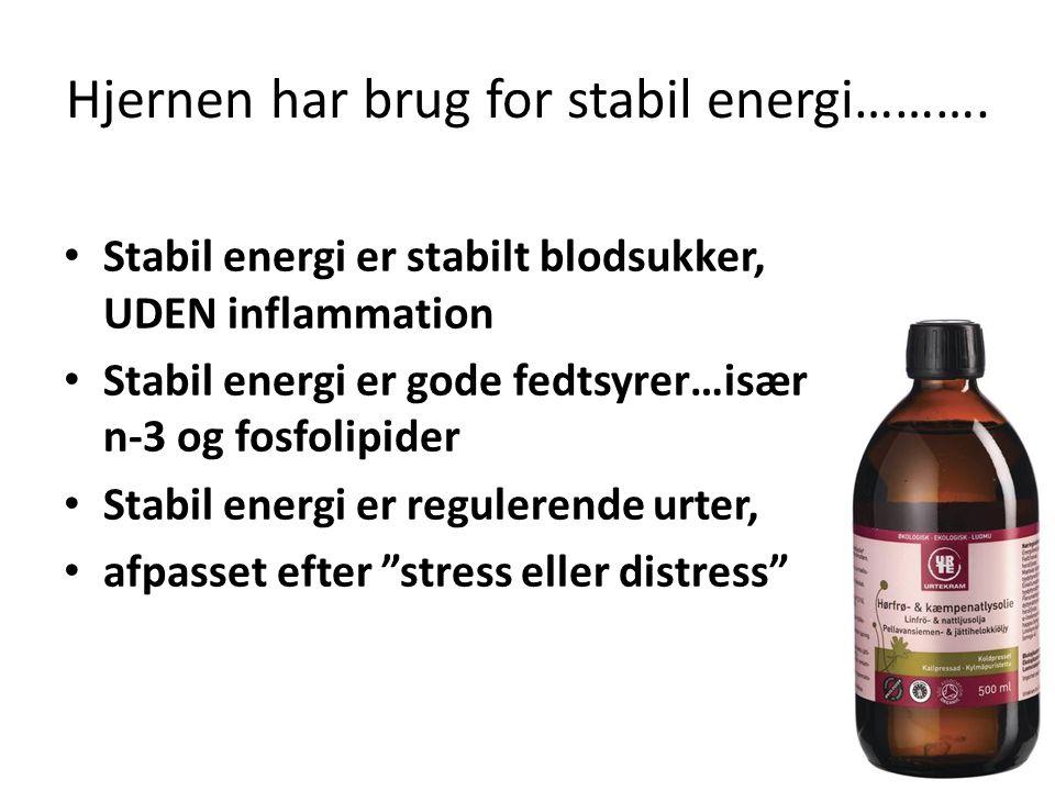 Hjernen har brug for stabil energi……….
