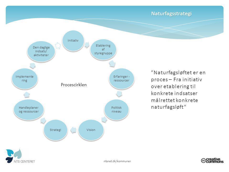 Naturfagsstrategi Initiativ. Etablering af styregruppe. Erfaringer - ressourcer. Politisk niveau.