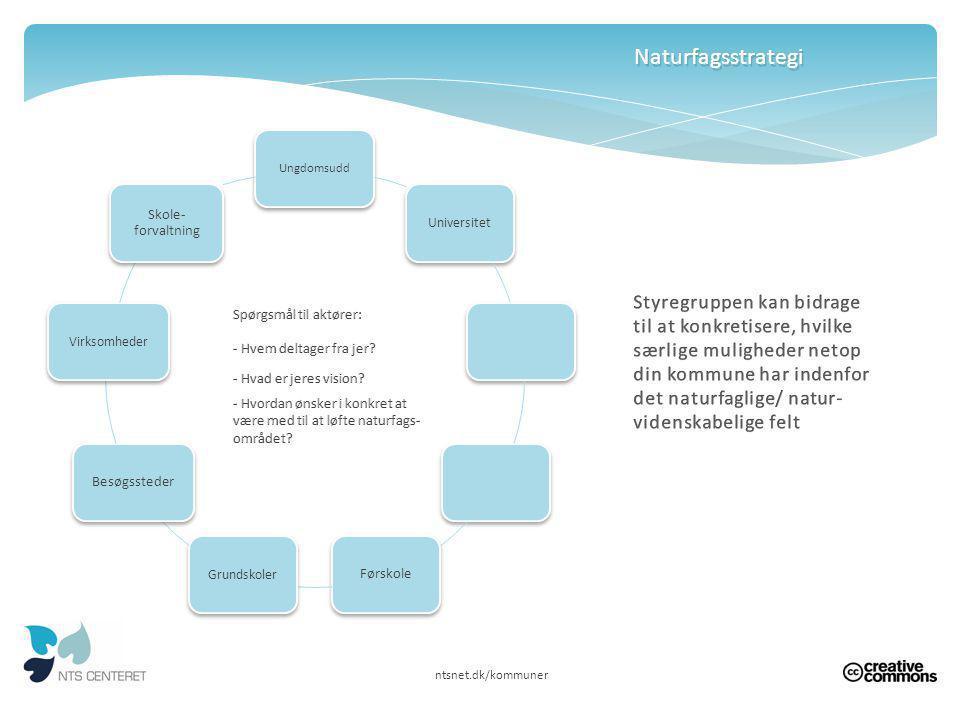 Naturfagsstrategi Ungdomsudd. Universitet. Førskole. Grundskoler. Besøgssteder. Virksomheder. Skole-forvaltning.