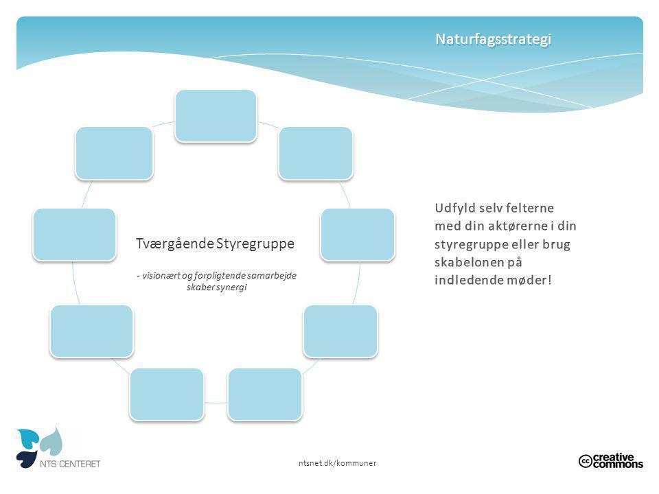 Naturfagsstrategi Tværgående Styregruppe