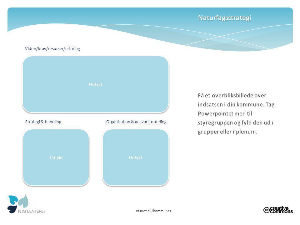 Naturfagsstrategi Viden/krav/resurser/erfaring. Udfyld.