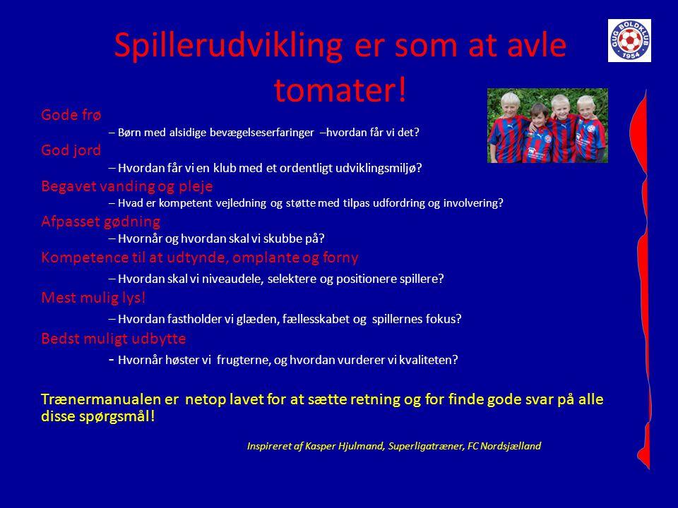 Spillerudvikling er som at avle tomater!