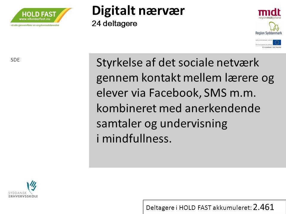 Digitalt nærvær 24 deltagere. SDE.