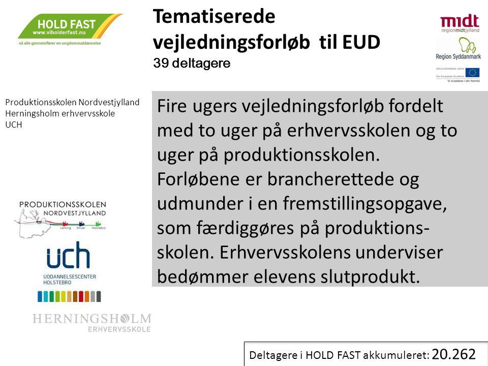 Tematiserede vejledningsforløb til EUD