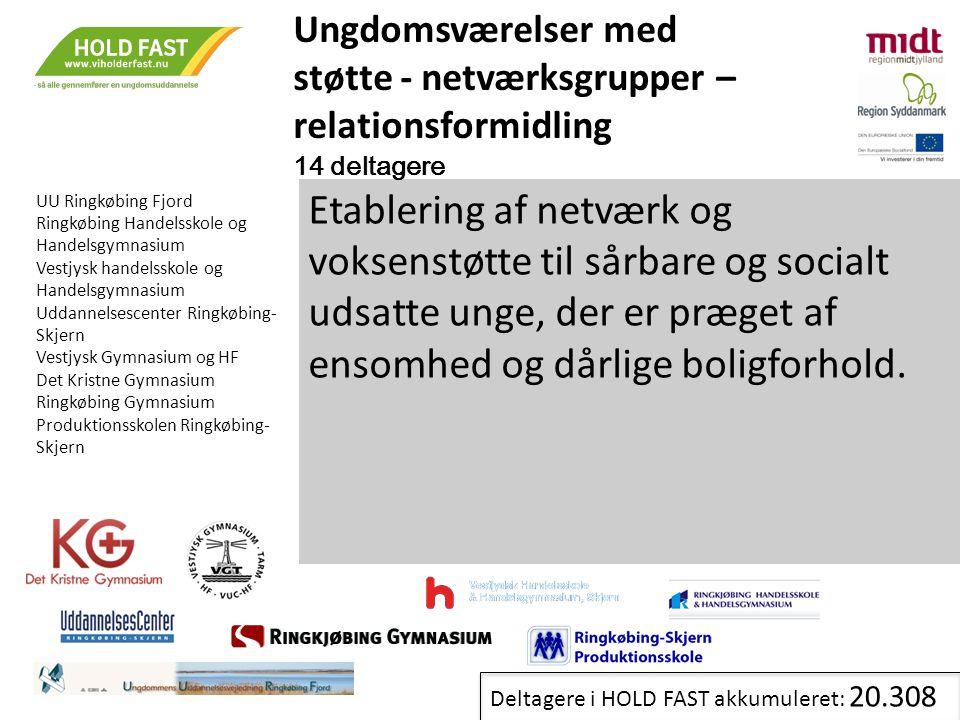 Ungdomsværelser med støtte - netværksgrupper – relationsformidling. 14 deltagere. UU Ringkøbing Fjord.