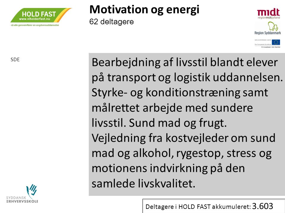 Motivation og energi 62 deltagere. SDE.