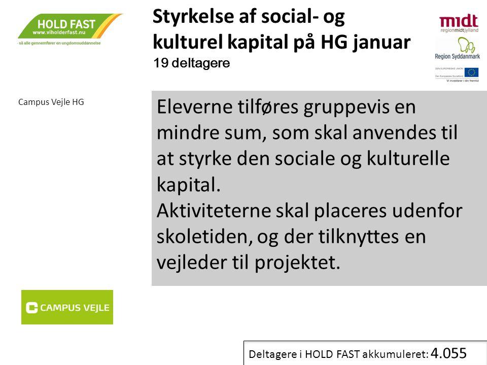 Styrkelse af social- og kulturel kapital på HG januar 19 deltagere