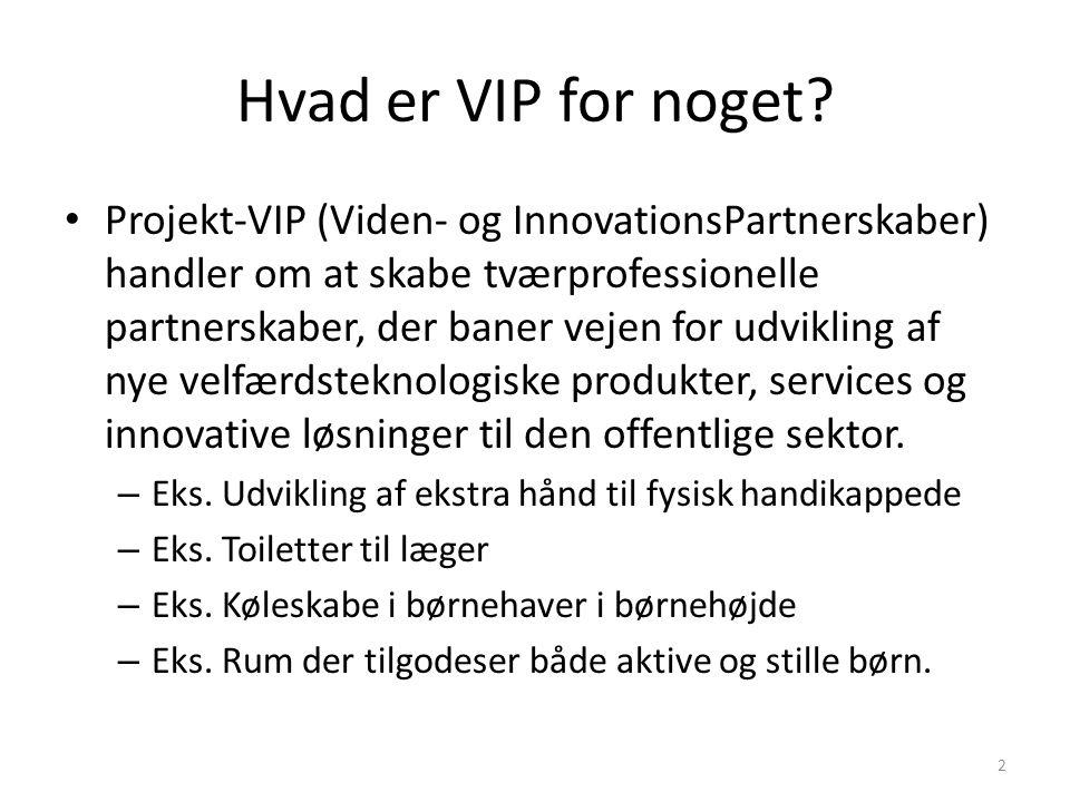 Hvad er VIP for noget