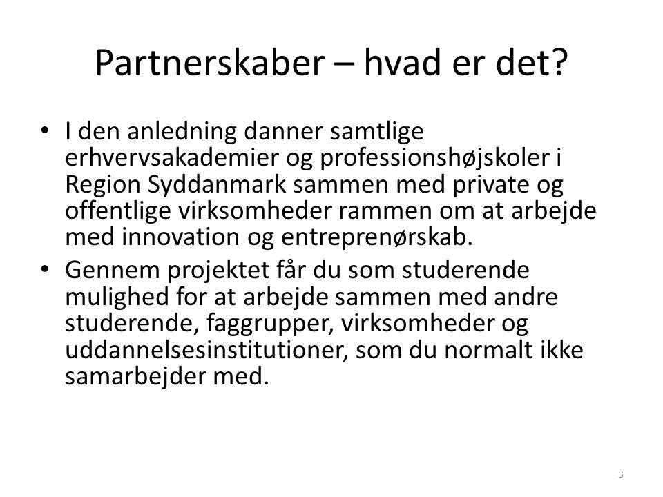 Partnerskaber – hvad er det