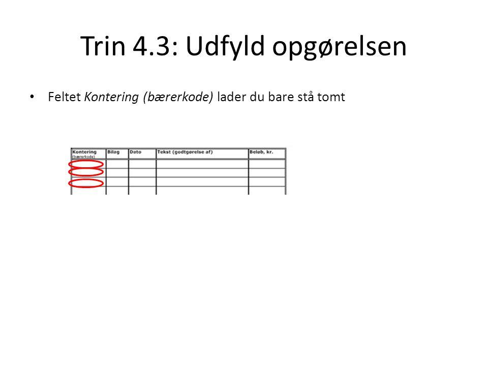 Trin 4.3: Udfyld opgørelsen