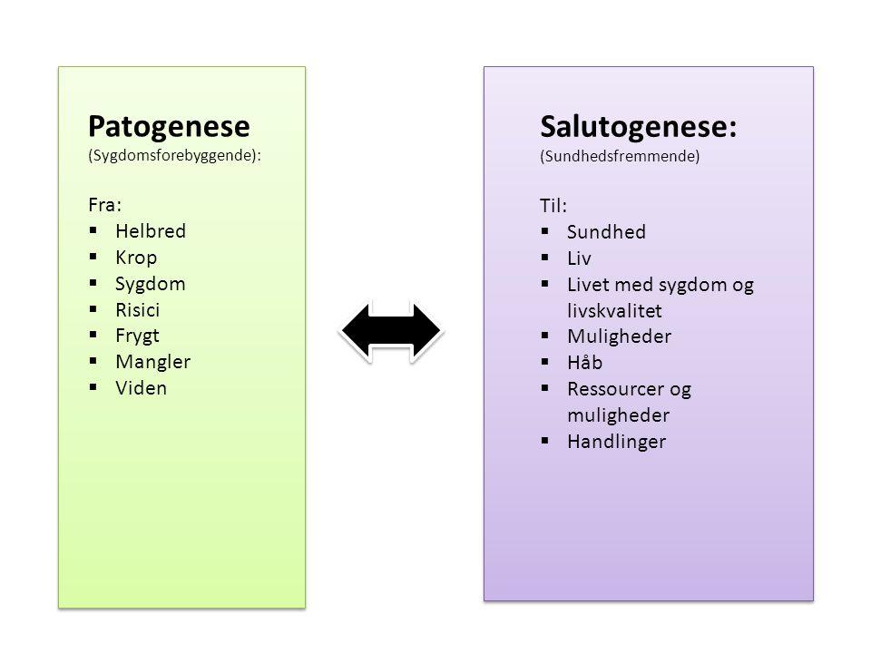 Patogenese (Sygdomsforebyggende): Salutogenese: