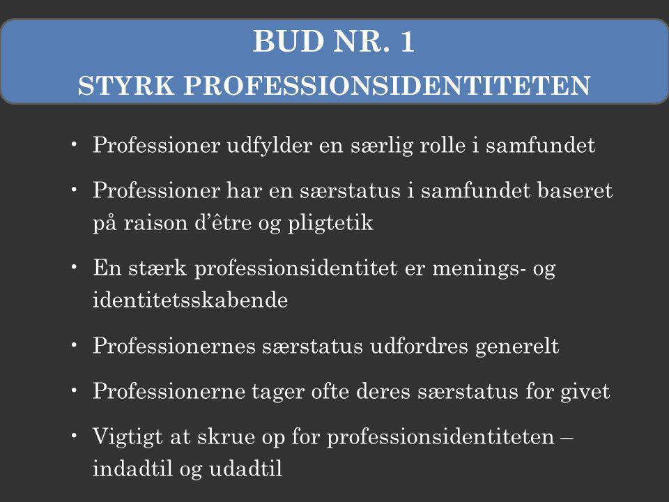STYRK PROFESSIONSIDENTITETEN