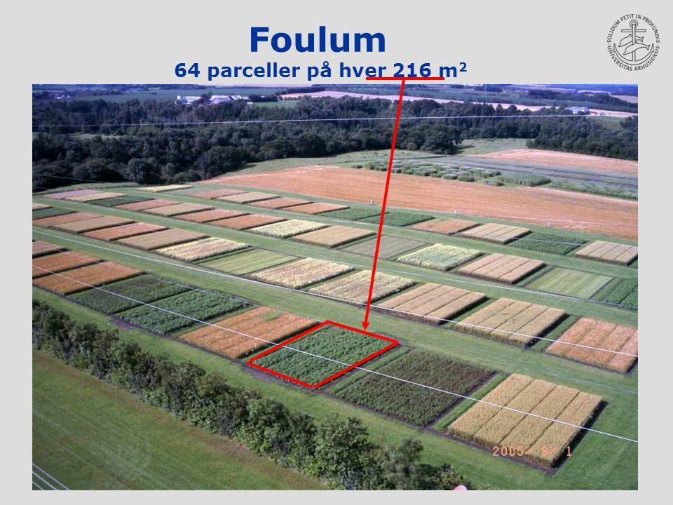 Foulum 64 parceller på hver 216 m2