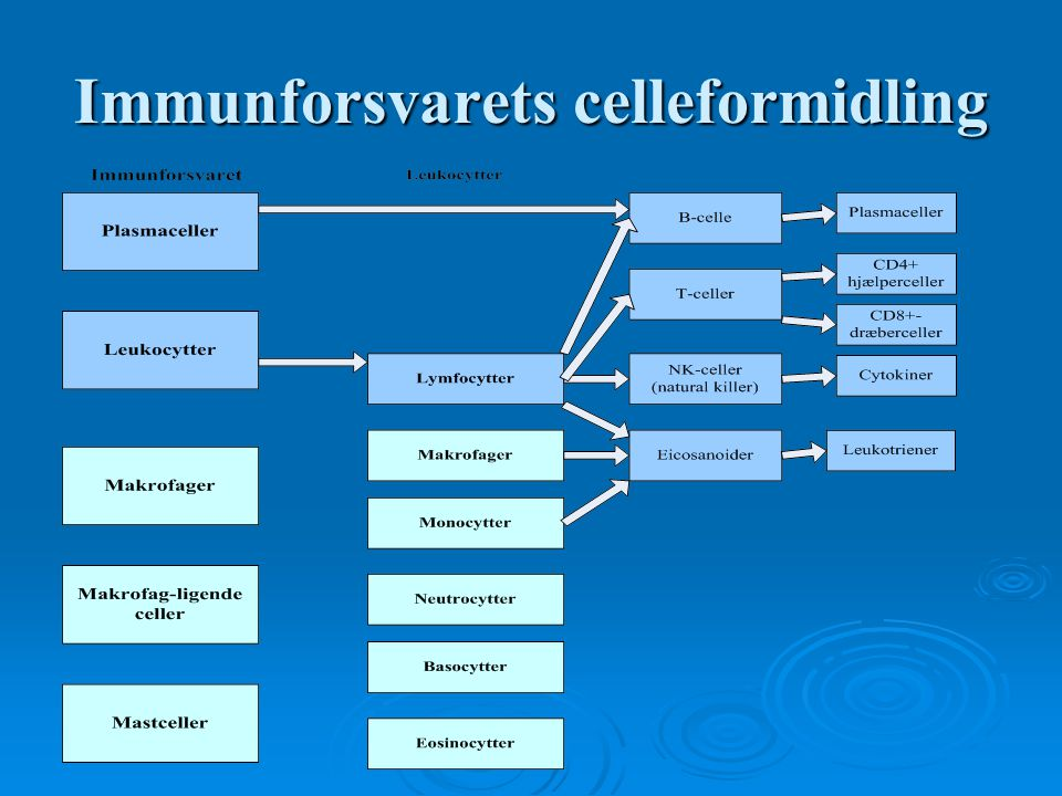 Immunforsvarets celleformidling