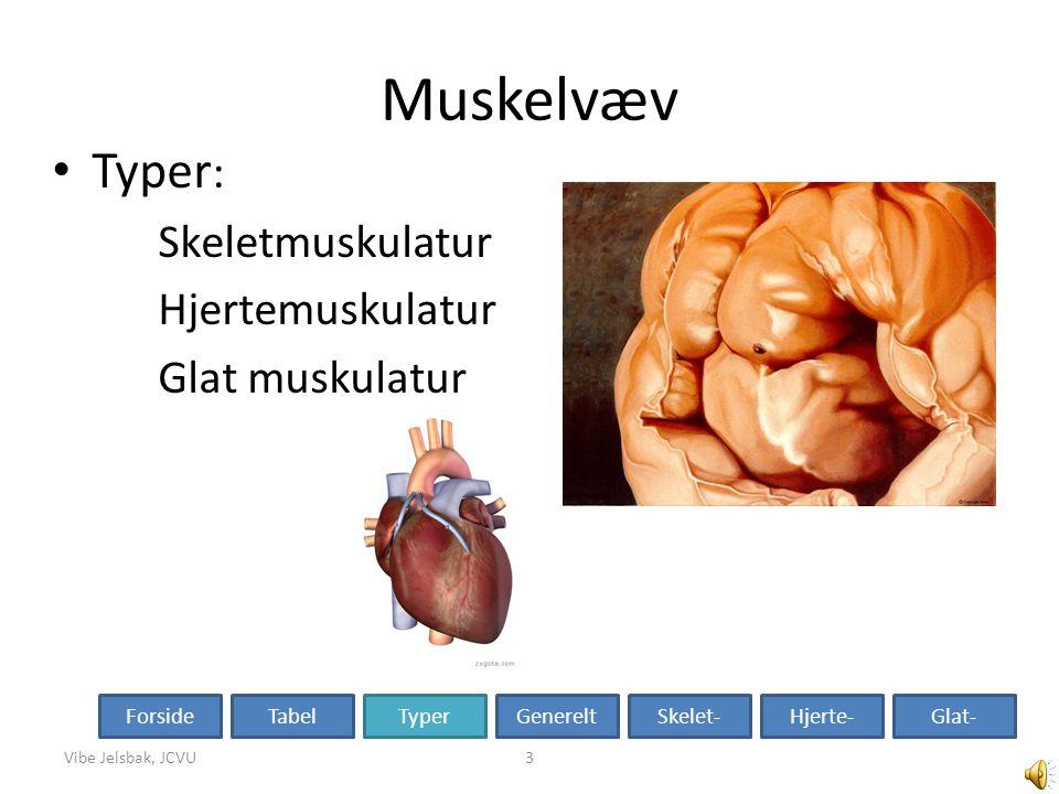 Muskelvæv Typer: Skeletmuskulatur Hjertemuskulatur Glat muskulatur