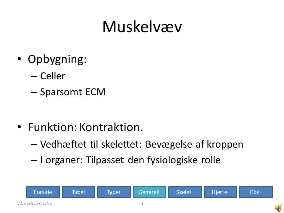 Muskelvæv Opbygning: Funktion: Kontraktion. Celler Sparsomt ECM