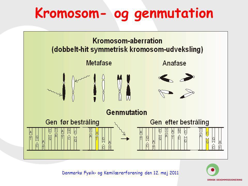 Kromosom- og genmutation