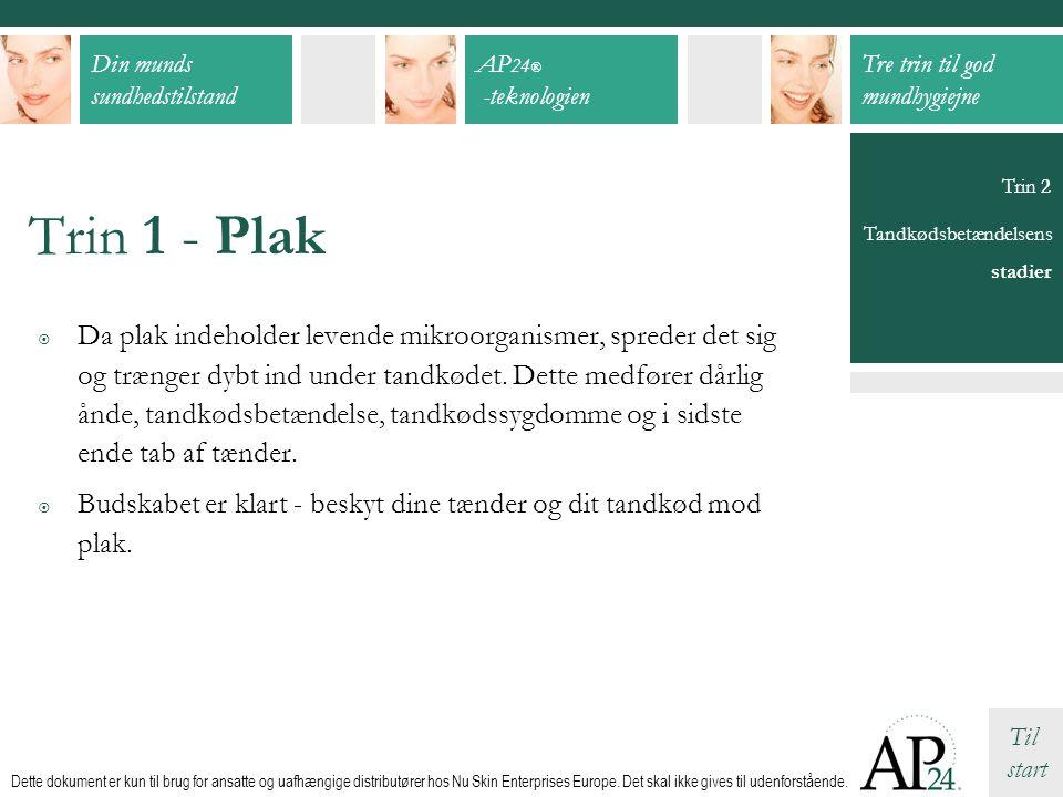 Trin 1 - Plak Trin 2. Tandkødsbetændelsens. stadier.