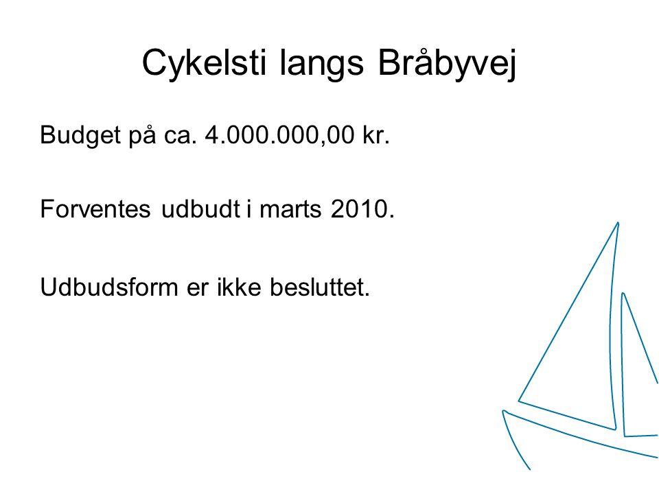 Cykelsti langs Bråbyvej