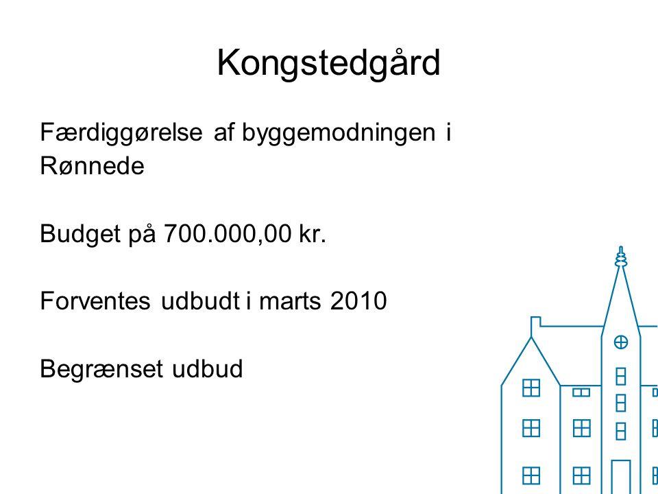 Kongstedgård Færdiggørelse af byggemodningen i Rønnede