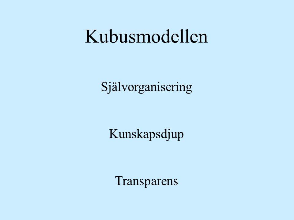 Kubusmodellen Självorganisering Kunskapsdjup Transparens