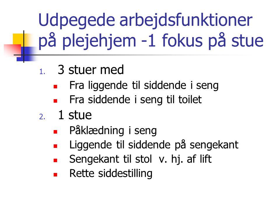 Udpegede arbejdsfunktioner på plejehjem -1 fokus på stue