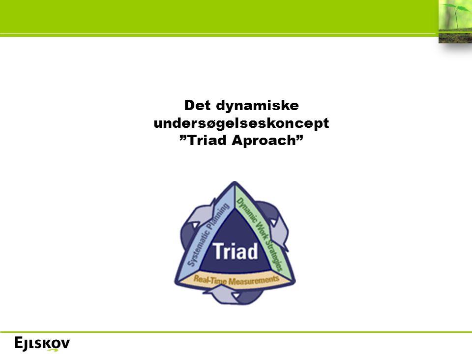 Det dynamiske undersøgelseskoncept Triad Aproach