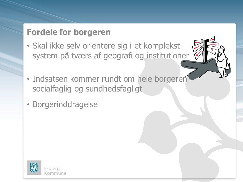 Fordele for borgeren Skal ikke selv orientere sig i et komplekst system på tværs af geografi og institutioner.