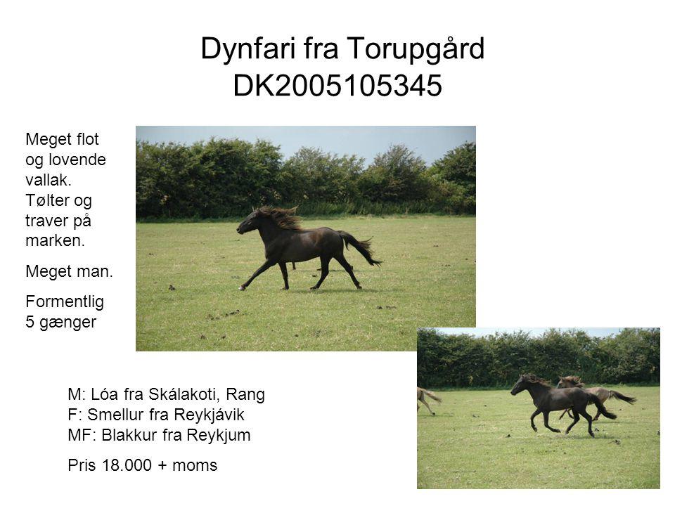 Dynfari fra Torupgård DK2005105345