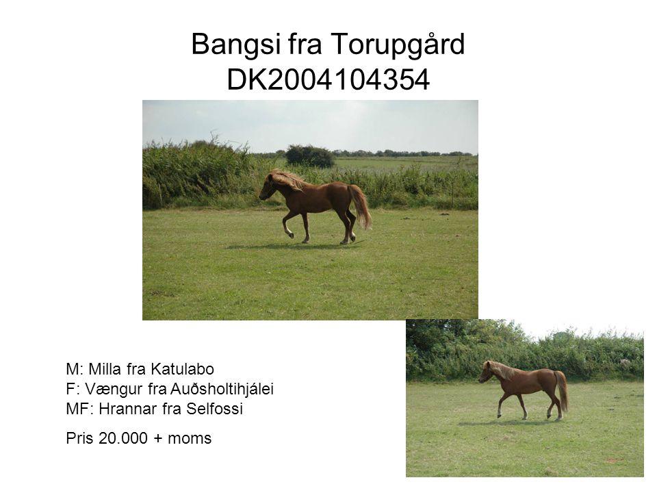 Bangsi fra Torupgård DK2004104354