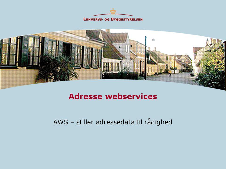 AWS – stiller adressedata til rådighed