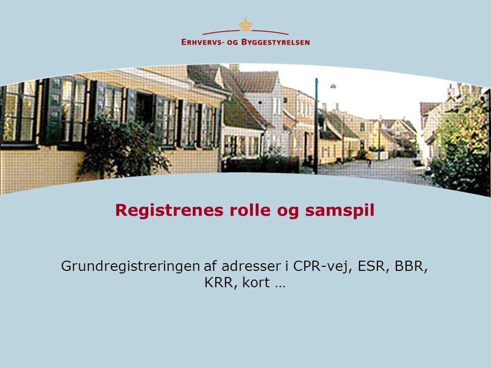 Registrenes rolle og samspil