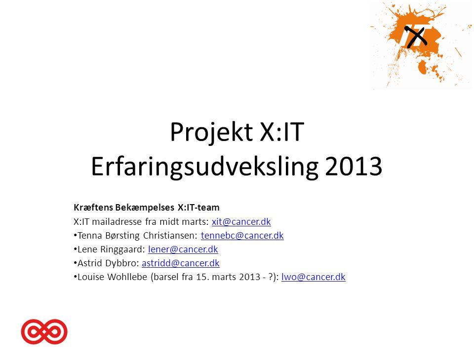 Projekt X:IT Erfaringsudveksling 2013