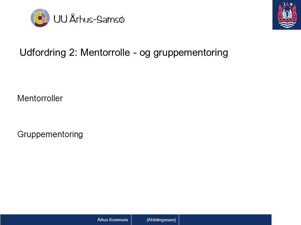 Udfordring 2: Mentorrolle - og gruppementoring