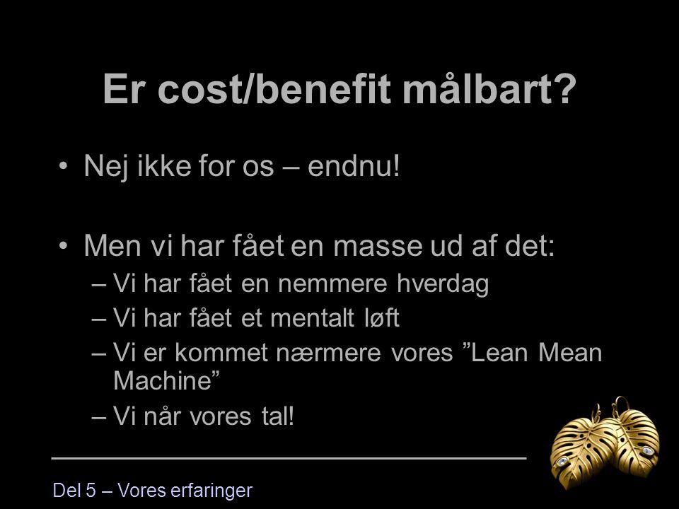 Er cost/benefit målbart