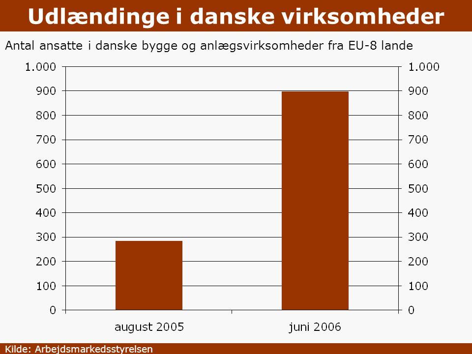 Udlændinge i danske virksomheder