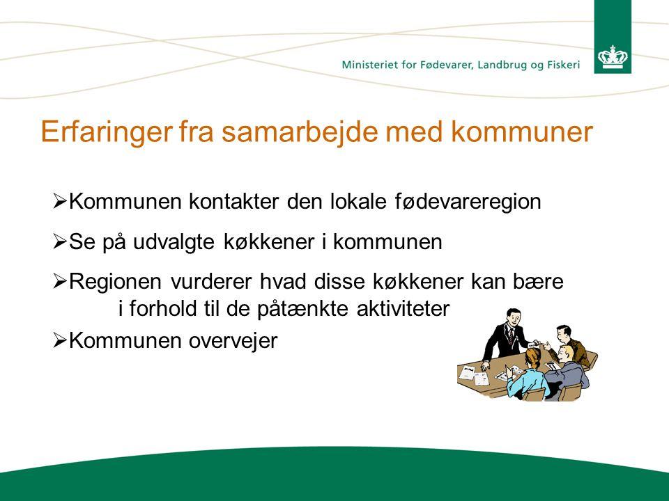 Erfaringer fra samarbejde med kommuner