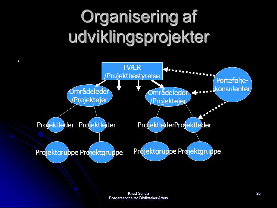 Organisering af udviklingsprojekter