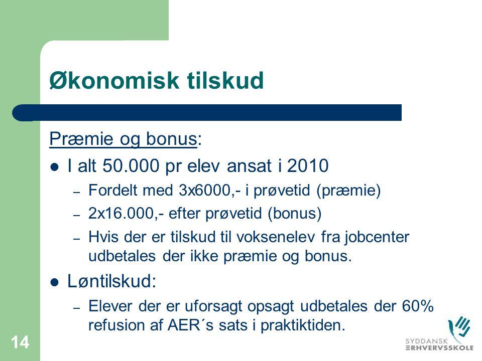 Økonomisk tilskud Præmie og bonus: I alt 50.000 pr elev ansat i 2010