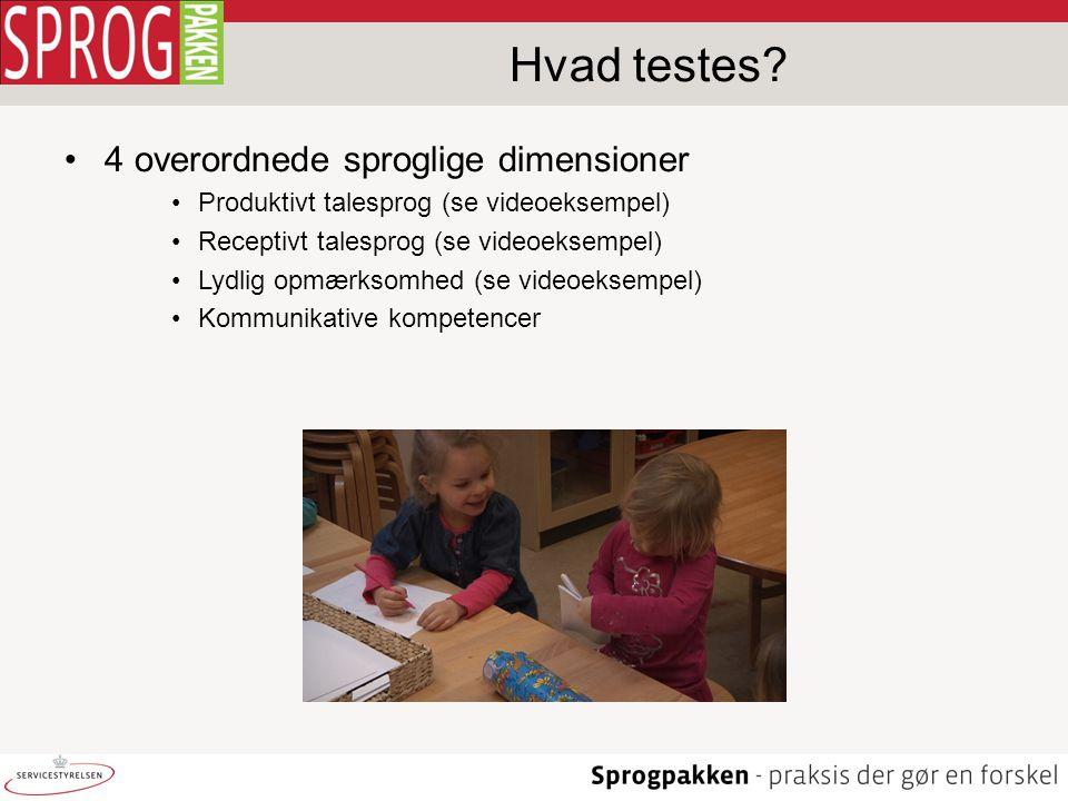 Hvad testes 4 overordnede sproglige dimensioner