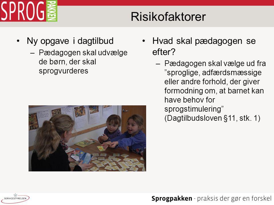 Risikofaktorer Ny opgave i dagtilbud Hvad skal pædagogen se efter